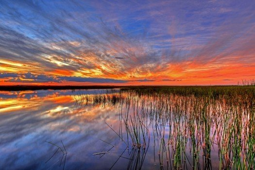sunset-landscape-sky-colorful-water-everglades-2.jpg